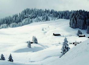 Salzkammergut Winterlandschaft Braunedel